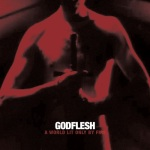 14. Godflesh - 2014 - A World Lit Only By Fire